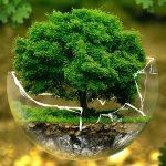 10 zdań o ochronie środowiska