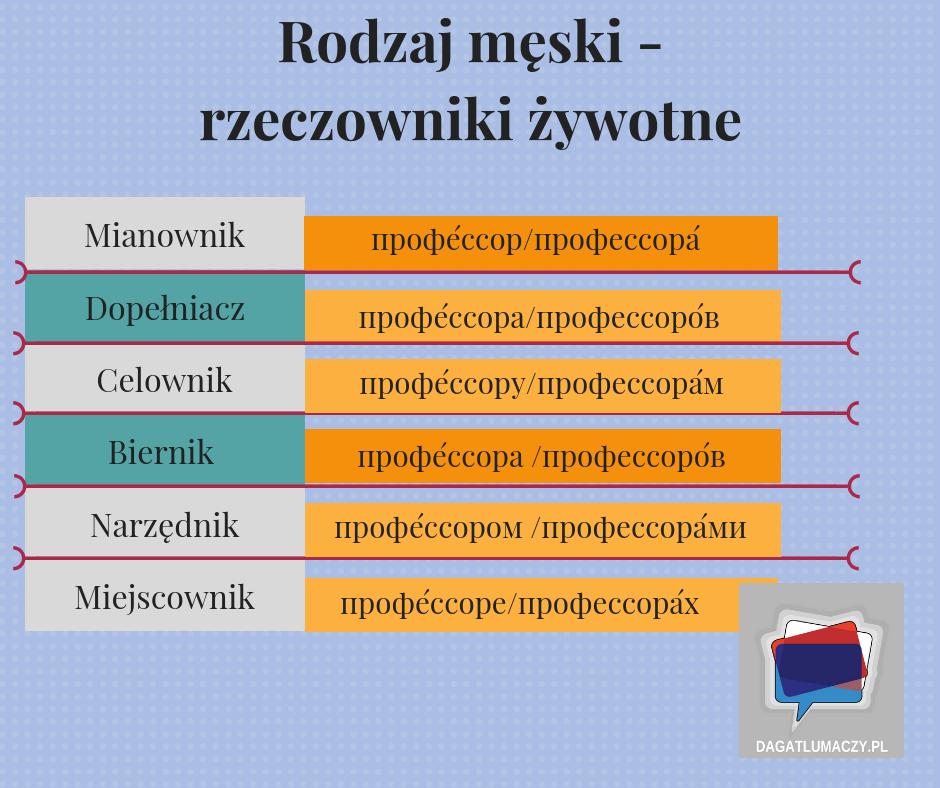 rzeczowniki żywotne w języku rosyjskim