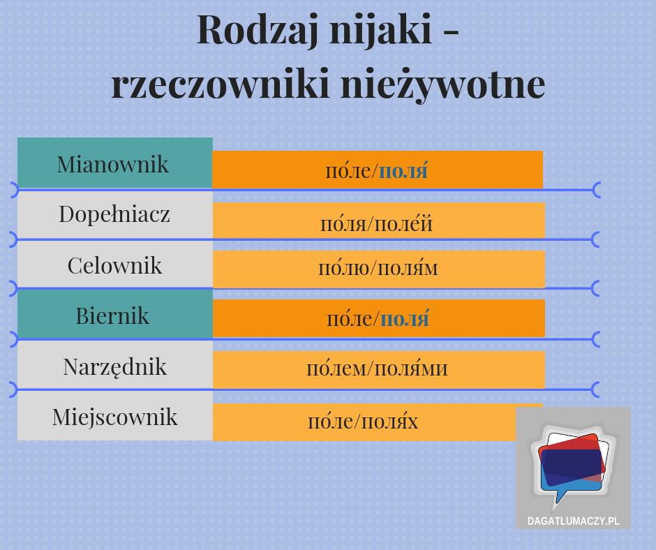 rzeczowniki nieżywotne rodzaju nijakiego w języku rosyjskim