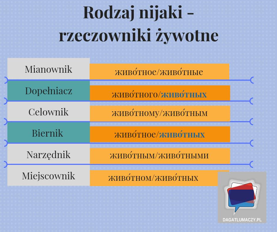 rzeczowniki żywotne rodzaju nijakiego w języku rosyjskim