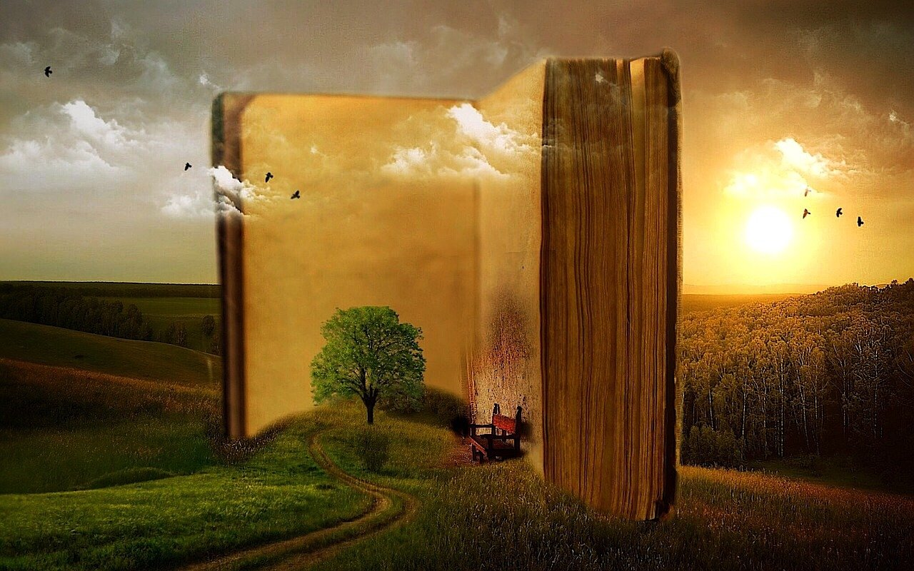 książka i las